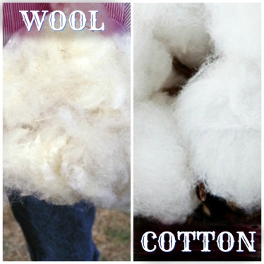 cotton-and-wool