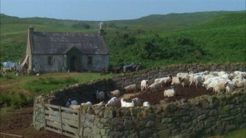 sheep stone